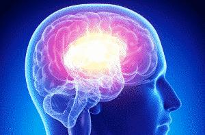 ac-cerveau